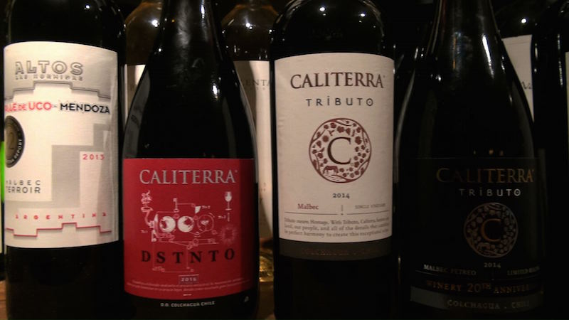 Caliterra London Malbec Tasting