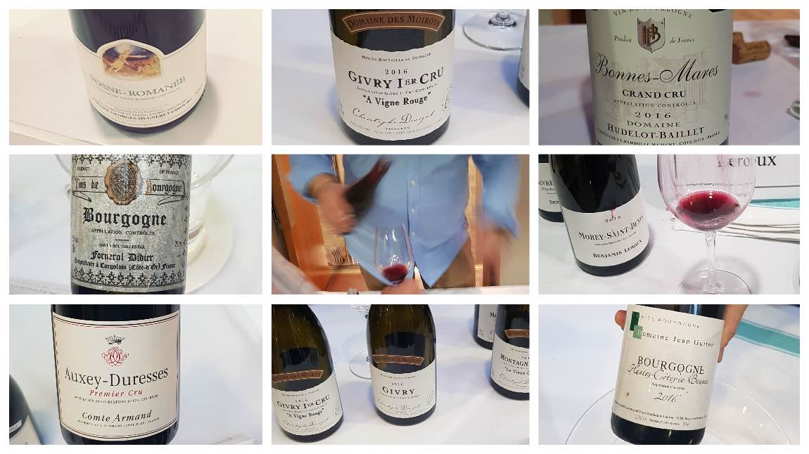Tasting Burgundy wine in London