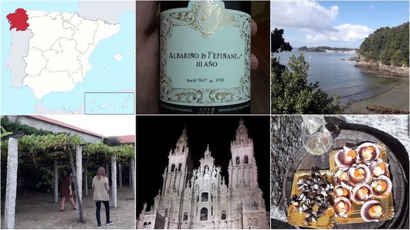 Wine Tasting In Galicia The Pilgrims Search For Albarino Wine Blog Uk Wine And Climate Change