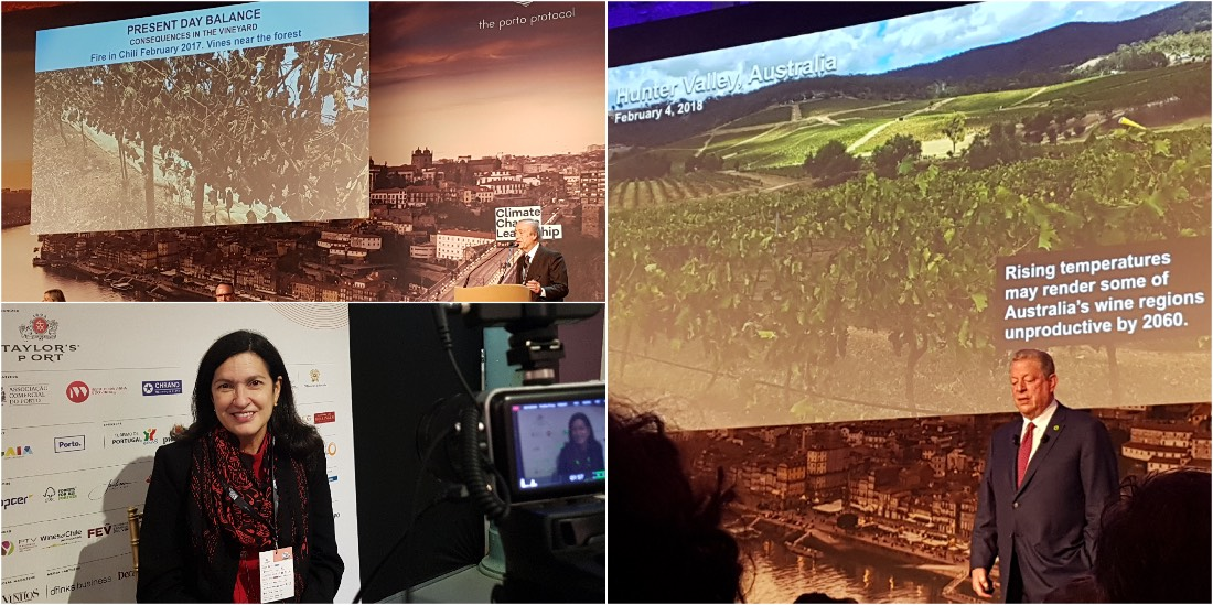 Climate Change and Wine Porto Conference Al Gore