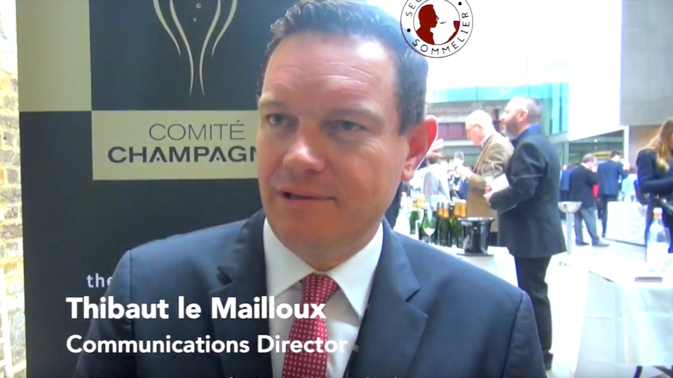 Thibaut de Maillot - CIVC Talking sustainability in Champagne