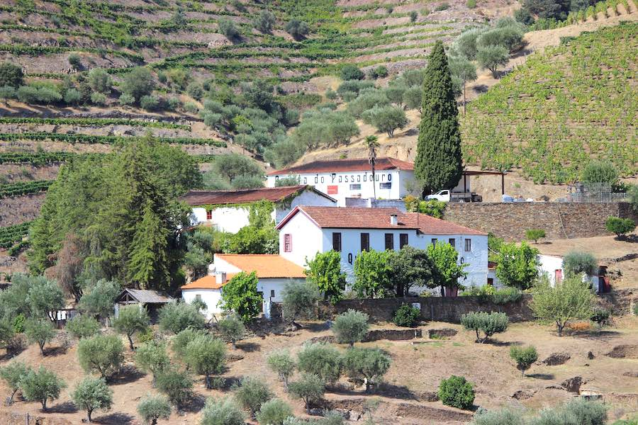 Quinta do Passadouro - neighbour of Quinta do Noval