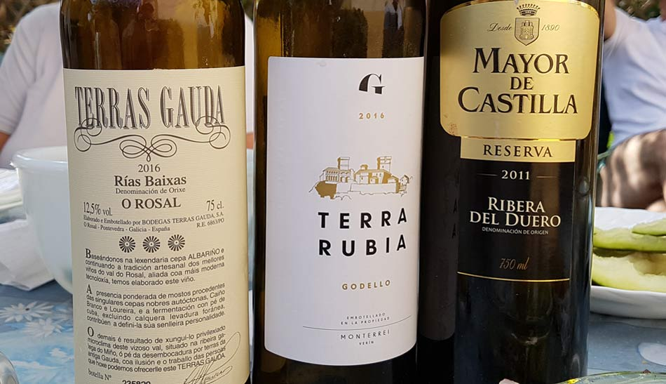 Terras Gauda Alborino and Godello wine